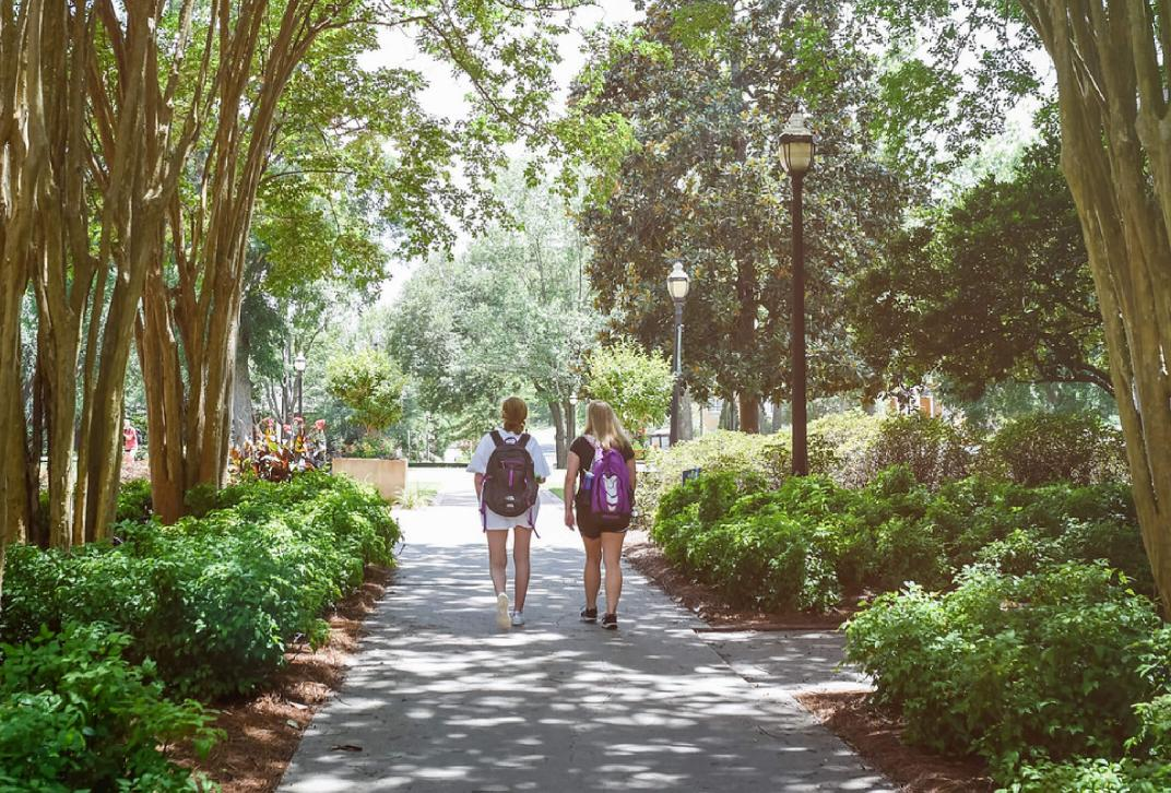 students walking on shady campus walkway