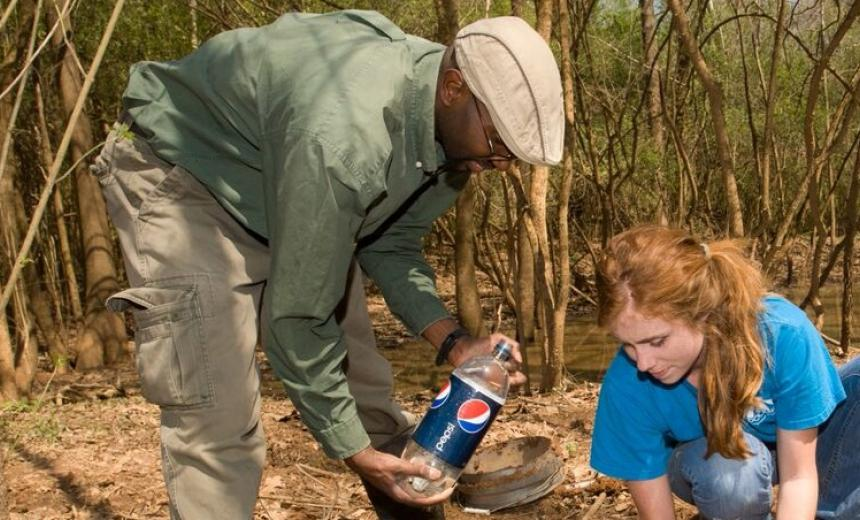 students gathering samples in the forest