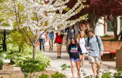 students walking on campus in spring