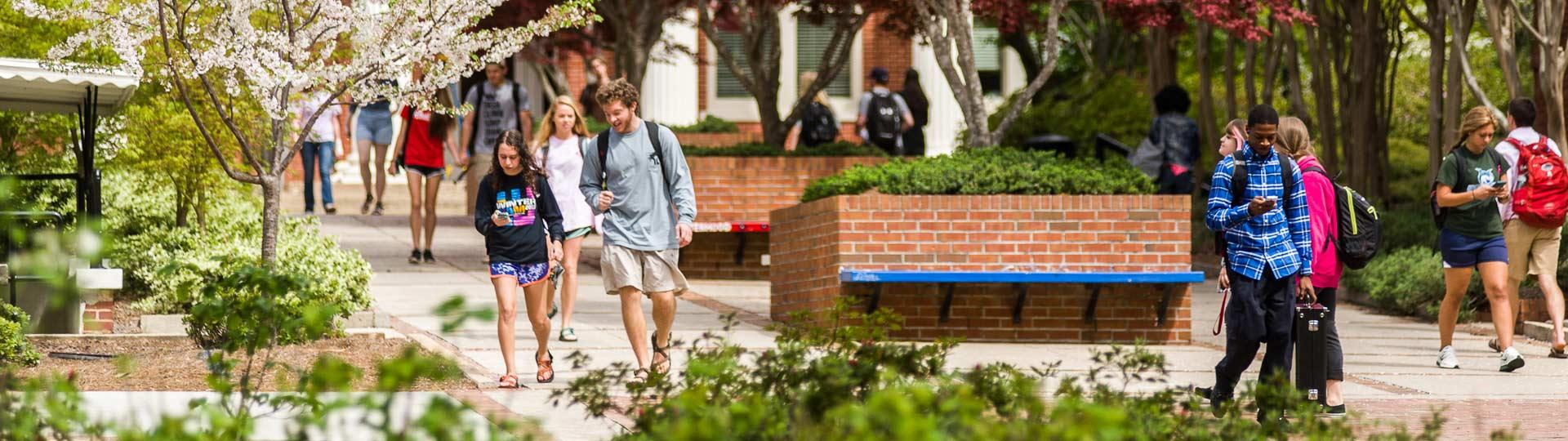 Georgia College Admissions
