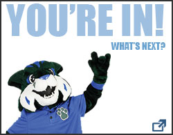 "A box with ""Your In, what's next"" title text with an image of the GC Bobcat mascot, Thunder, and an arrow at the bottom right of the box that links out to the freshman-transfer next steps for enrollment page."